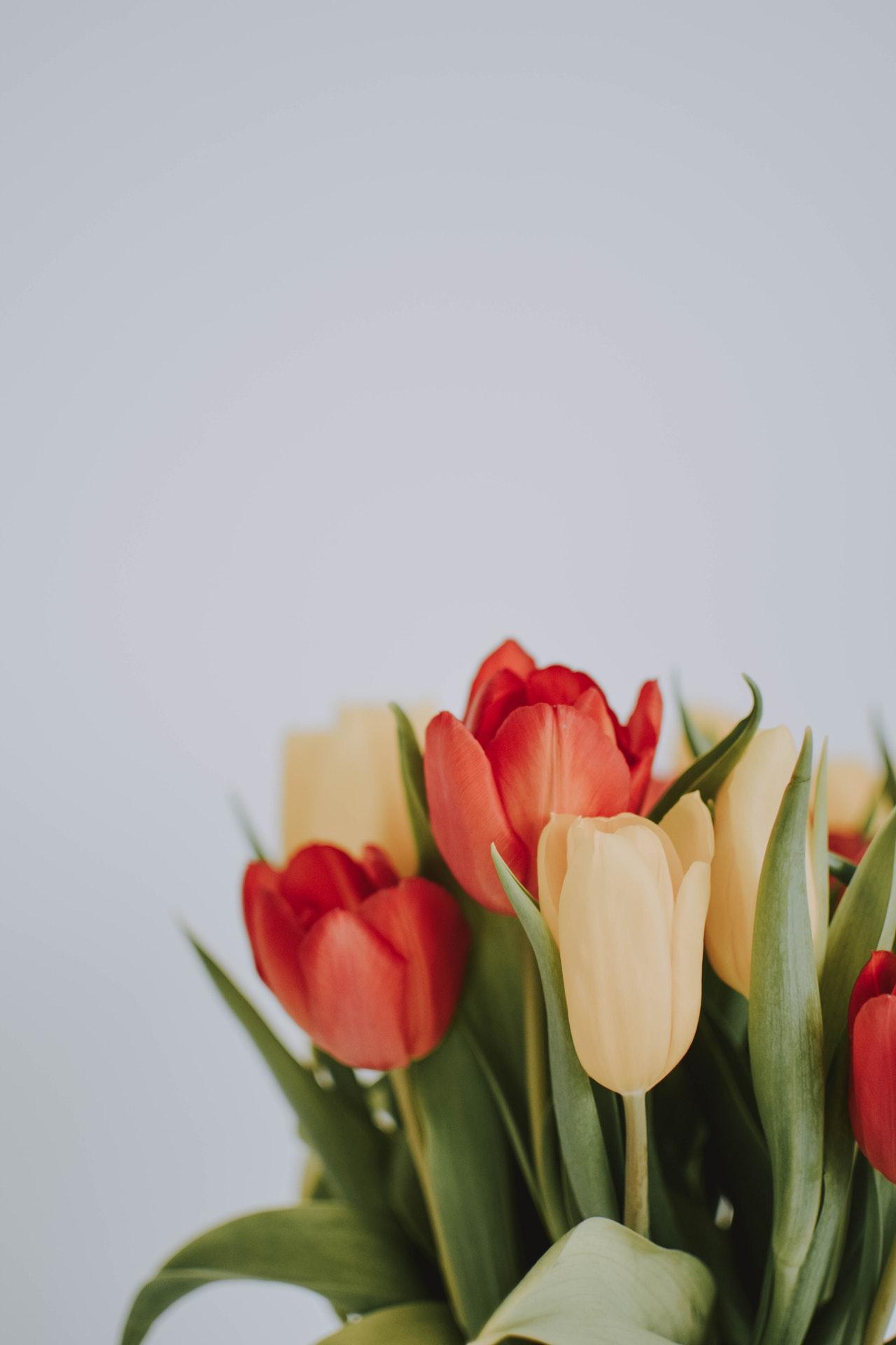 Z czego wykonane są sztuczne kwiaty?